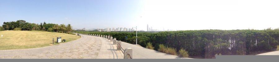 深圳红树林旅游-深圳红树林旅游景点-深圳红树林图片