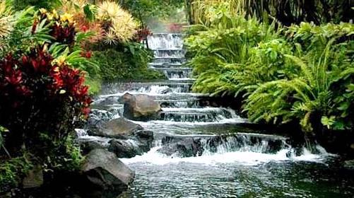 """简介: 位于乐东县境内,是我国现存面积最大、保存最好的热带原始森林区,1992年7月辟为国家森林公园,主峰海拔1412米,最低处海拔仅200米,相对高差千米以上,地形十分复杂。尖峰岭是一个巨大的天然物种基因库,已发现维管束植物2000多种,树种达300多种,有的巨树高达三四十米,要四五人才能合抱过来,鸟兽类148种,昆虫类近千种。与南美亚马逊热带雨林、非洲刚果河流域热带雨林、印尼和马来西亚的热带雨林相比,这里储藏着更多鲜为人知或不为人知的秘密。联合国专家考察尖峰岭后认为这里是联合国""""人与生物圈"""