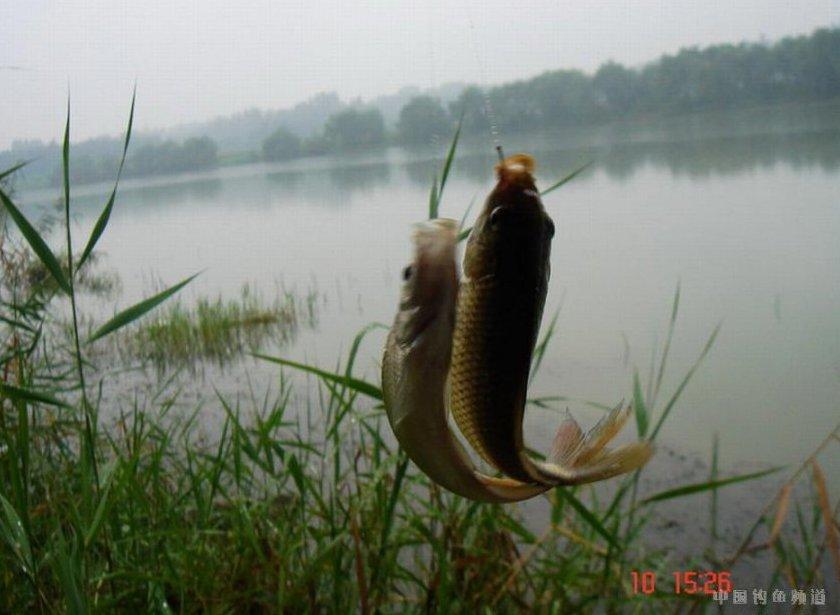 黄河大观旅游 黄河大观旅游景点 黄河大观图片 黄河大观攻...