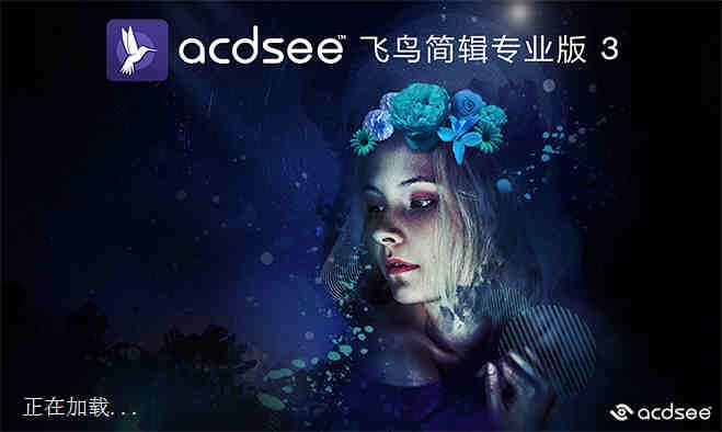 ACDSee飞鸟简辑专业版 3下载